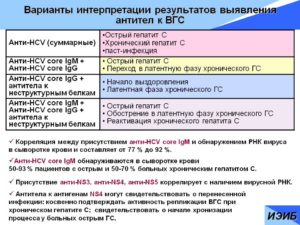 Анализ крови anti hcv total что это
